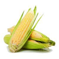 Corn local