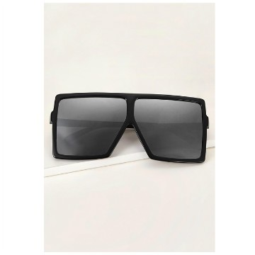Flat top shield sunglasses with case
