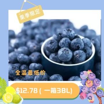 Big sweet blueberry 3bl